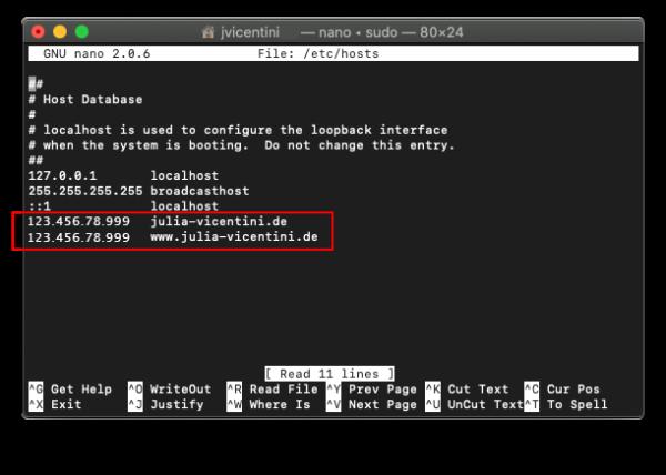 terminal nameserver ip zuweisen