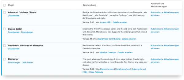 Wordpress 5.5 Auto Update Problem