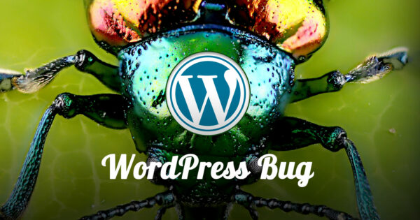 WordPress Problem Bug