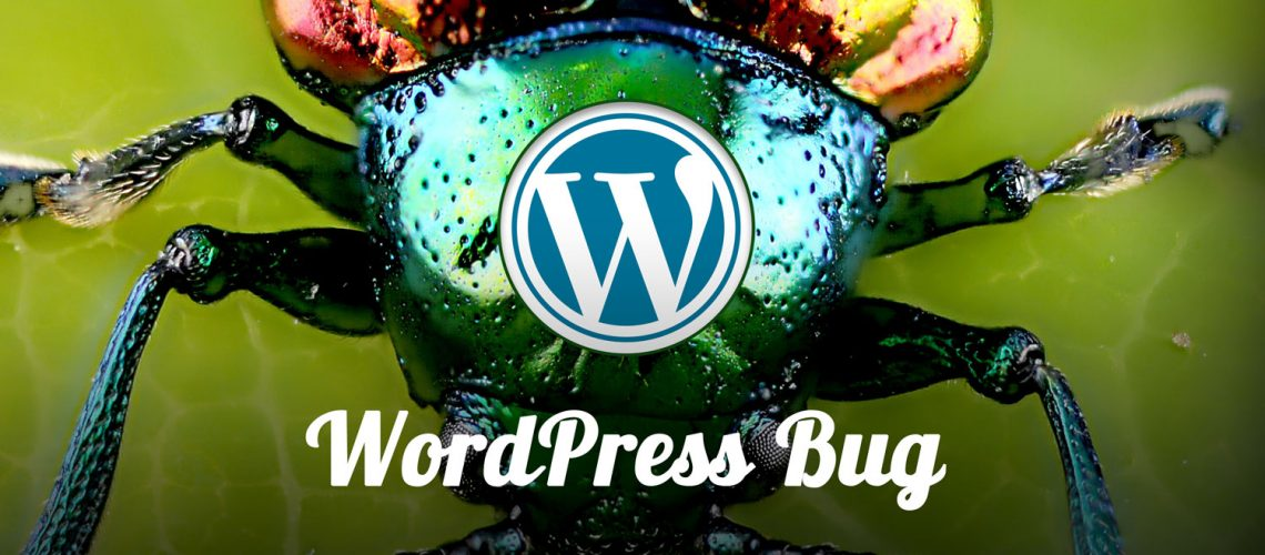 WordPress Problem Bug